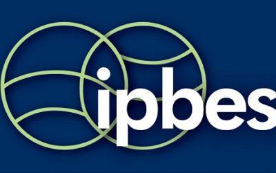 Point de vue sur le rapport de l'IPBES