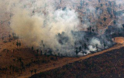 Amazonie : «La jungle se consume et les hommes se taisent»